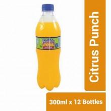 Tampico Citrus Punch - 300ml x 12 Bottles
